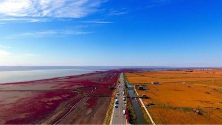 Разноцветная планета: Красный берег