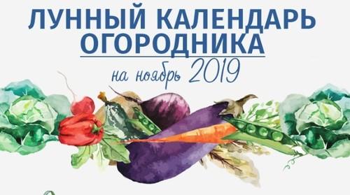 Лунный календарь огородника-садовода на ноябрь 2019