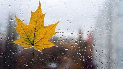 Прогноз погоди в Україні на 8 листопада