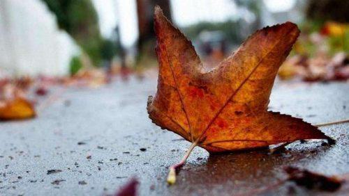 Прогноз погоди в Україні на 9-10 листопада