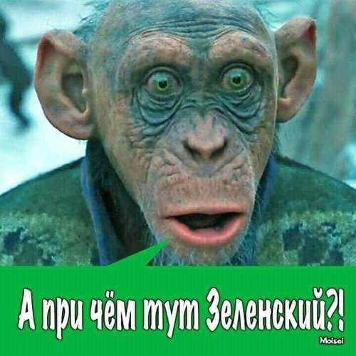 """""""РФ розраховує, що Зеленський зупинить війну на Донбасі"""", - Лавров - Цензор.НЕТ 9619"""