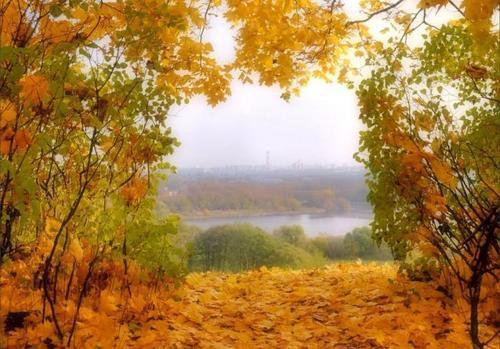 Прогноз погоди в Україні на 17 листопада