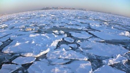Северный Ледовитый океан освобождается ото льда