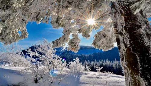 Прогноз погоди в Україні на 15 січня