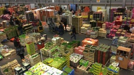 Под Парижем среди бананов из Колумбии нашли 500 килограммов кокаина