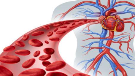 Определена самая устойчивая к раку группа крови