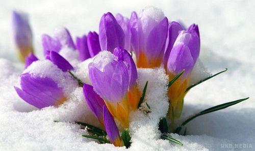 Прогноз погоди в Україні на 26 лютого