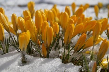 Прогноз погоди в Україні на 28 лютого