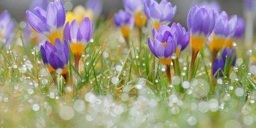 Прогноз погоди в Україні на 20 березня