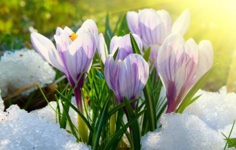 Прогноз погоди в Україні на 25 березня