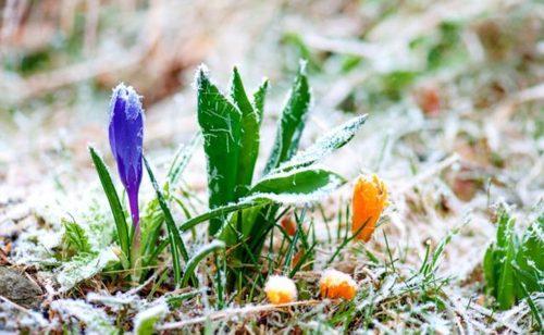 Прогноз погоди в Україні на 31 березня