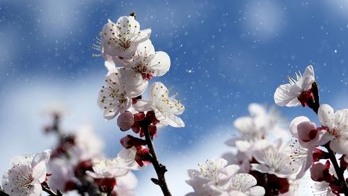 Прогноз погоди в Україні на 07 квітня