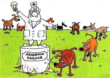 """Игра на рефлексах"" - Иван Лютый"