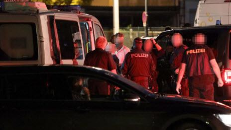 Расследованием убийства в Австрии занимается ведомство по борьбе с терроризмом