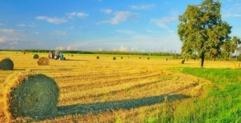 Прогноз погоди в Україні на 11 серпня