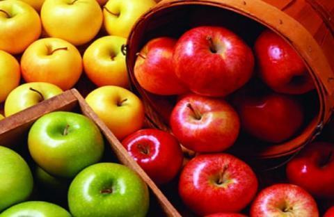 Какие выбрать яблоки для большей пользы организму
