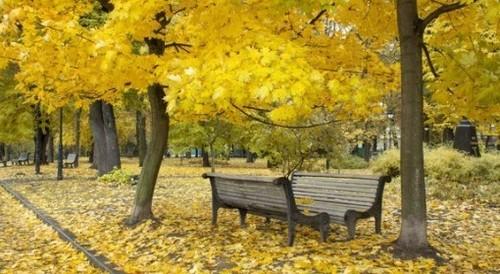 Прогноз погоди в Україні на 22 жовтня