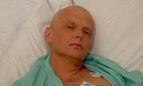 Вдова Александра Литвиненко подала иск в ЕСПЧ против России на сумму 3,5 млн евро
