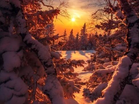 Прогноз погоди в Україні на 6 грудня