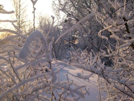 16 января – День святого мученика Гордия и пророка Малахия: Приметы и суеверия