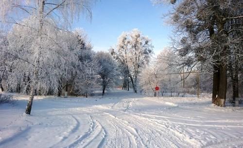 Прогноз погоди в Україні на 5 лютого 2021 року