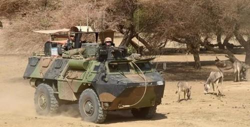 Французская разведка обеспокоена экспансией Аль-Каиды в Африке