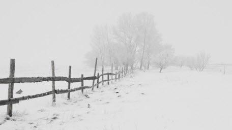 Прогноз погоди в Україні на 11 лютого 2021 року
