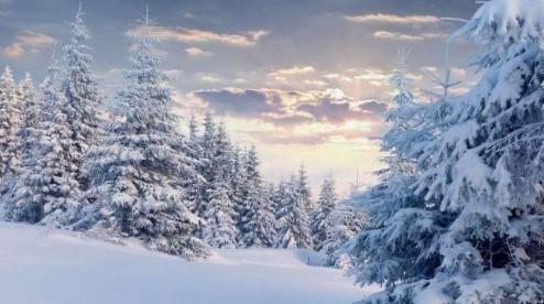 Прогноз погоди в Україні на 12 лютого 2021 року