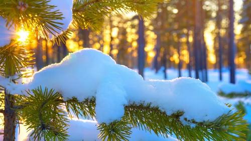 Прогноз погоди в Україні на 18 лютого 2021 року