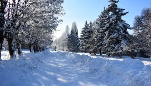 Прогноз погоди в Україні на 22 лютого 2021 року