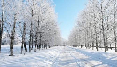 Прогноз погоди в Україні на 23 лютого 2021 року