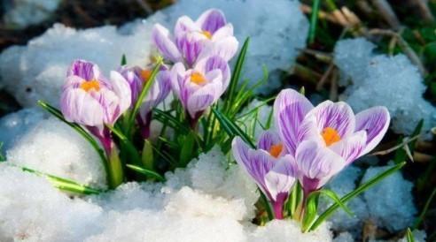 Прогноз погоди в Україні на 5 березня 2021 року