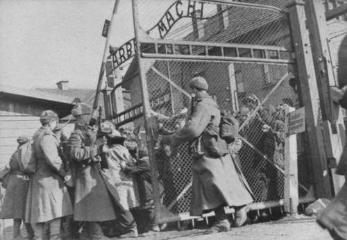 Исторический ликбез: «Arbeit Macht Frei - Труд делает свободным...»