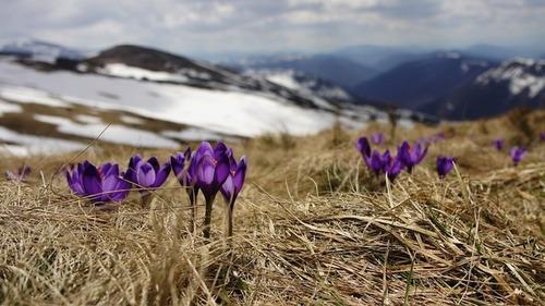 Прогноз погоди в Україні на 9 квітня 2021 року