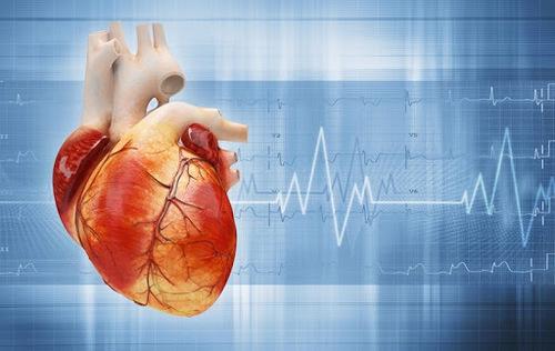 Як коронавірус впливає на роботу серця