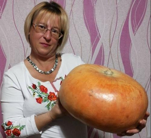 """Ошибок прошлого тяжелый груз"" - Олена Степова"