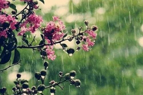 Прогноз погоди в Україні на 18 травня 2021 року – у полоні дощів та гроз