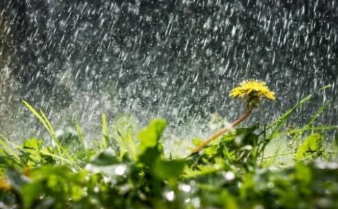 Прогноз погоди в Україні на 9 серпня 2021 року
