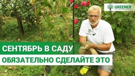 Как сделать почву плодородной? САМЫЕ ЭФФЕКТИВНИЕ СПОСОБЫ!