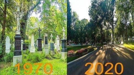 Парк на месте кладбища. Молодёжный парк. Харьков